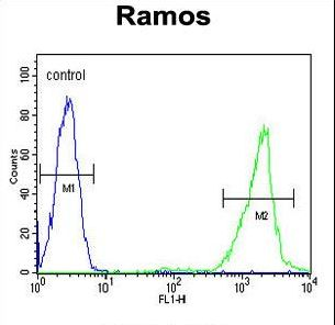 HMMR Antibody flow cytometry of Ramos cells (right histogram) compared to a negative control cell (left histogram). FITC-conjugated goat-anti-rabbit secondary antibodies were used for the analysis.