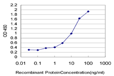 Detection limit for recombinant GST tagged ELA2 is approximately 0.3 ng/ml as a capture antibody.