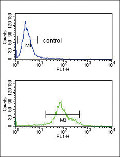 HSD17B3 Antibody flow cytometry of K562 cells (bottom histogram) compared to a negative control cell (top histogram). FITC-conjugated goat-anti-rabbit secondary antibodies were used for the analysis.