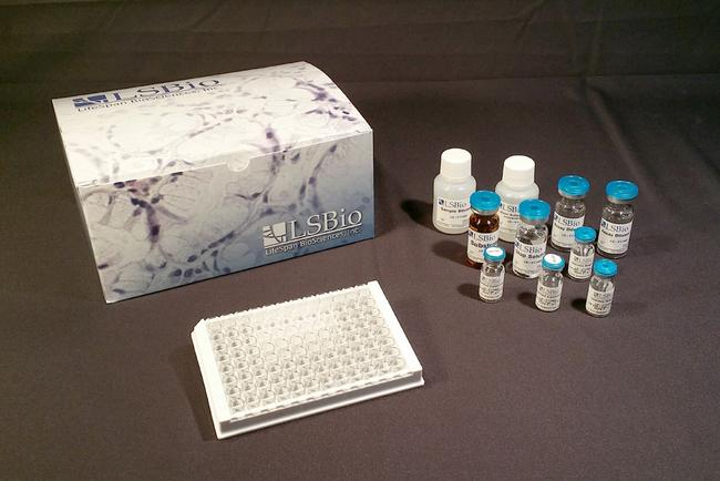 MLC2 / MYL9 ELISA Kit