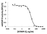 Activated mouse MMP-9 (100 ng/mL) is inhibited by different concentrations of human TIMP-2.