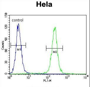 IGF2 Antibody (Center R54) flow cytometry of HeLa cells (right histogram) compared to a negative control cell (left histogram). FITC-conjugated goat-anti-rabbit secondary antibodies were used for the analysis.
