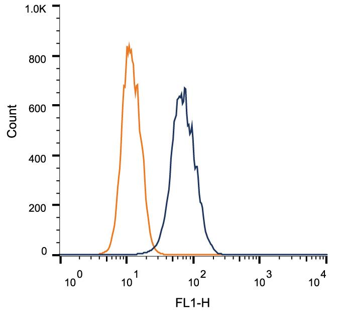 Flow Cytometry: Mannose 6 Phosphate Receptor (Cation independent) Antibody (2G11) - Intracellular flow cytometric staining of 1 x 10^6 MCF-7 cells using Mannose 6 Phosphate Receptor antibody (dark blue). Isotype control shown in orange. An antibody concentration of 1 ug/1x10^6 cells was used.