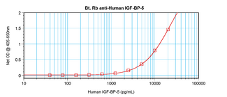 Biotinylated Anti-Human IGF-BP5 Sandwich ELISA