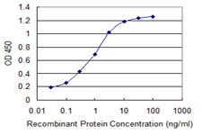 ADRM1 Antibody - Detection limit for recombinant GST tagged ADRM1 is 0.03 ng/ml as a capture antibody.