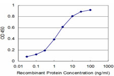 Detection limit for recombinant GST tagged ARHGEF11 is approximately 0.03 ng/ml as a capture antibody.