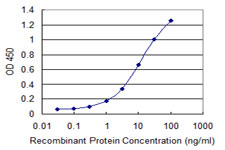 CORO1C Antibody - Detection limit for recombinant GST tagged CORO1C is 0.1 ng/ml as a capture antibody.