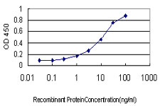 Detection limit for recombinant GST tagged EDN3 is approximately 0.3 ng/ml as a capture antibody.