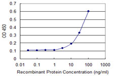 ERP44 Antibody - Detection limit for recombinant GST tagged TXNDC4 is 1 ng/ml as a capture antibody.