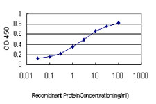 Detection limit for recombinant GST tagged GYG1 is approximately 0.03 ng/ml as a capture antibody.