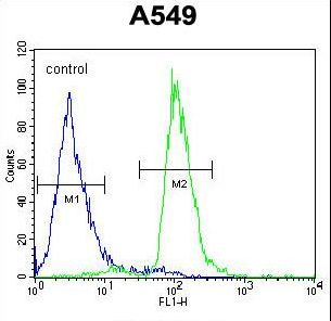 PARPBP / C12orf48 Antibody - C12orf48 Antibody flow cytometry of A549 cells (right histogram) compared to a negative control cell (left histogram). FITC-conjugated goat-anti-rabbit secondary antibodies were used for the analysis.
