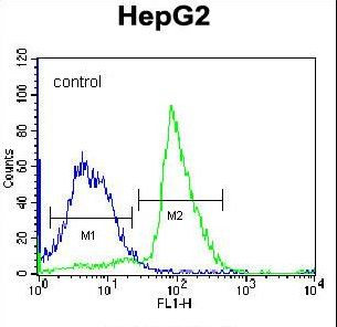 PON2 Antibody flow cytometry of K562 cells (right histogram) compared to a negative control cell (left histogram). FITC-conjugated donkey-anti-rabbit secondary antibodies were used for the analysis.