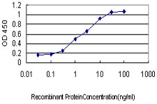 Detection limit for recombinant GST tagged SSR1 is approximately 0.03 ng/ml as a capture antibody.