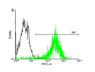 FACS analysis of A-431 cells stained with STIP1 monoclonal antibody clone 2E1 (Green) and non-stained A-431 cells (Black) as negative control.