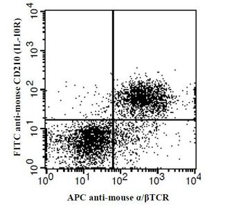 IL-10 transgenic mouse splenocytes stained with APC anti-mouse alpha / beta TCR and FITC anti-mouse CD210 (IL-10R). This image was taken for the unconjugated form of this product. Other forms have not been tested.