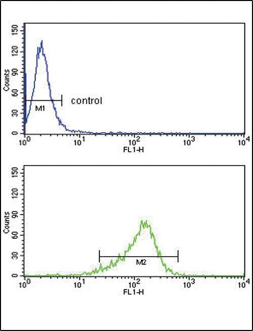 IL12A Antibody flow cytometry of MDA-MB231 cells (bottom histogram) compared to a negative control cell (top histogram). FITC-conjugated goat-anti-rabbit secondary antibodies were used for the analysis.
