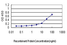 Detection limit for recombinant GST tagged IL13RA1 is approximately 1 ng/ml as a capture antibody.