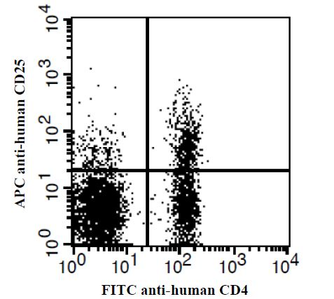 Human peripheral blood lymphocytes stained with FITC anti-human CD4 and APC anti-human CD25. This image was taken for the unconjugated form of this product. Other forms have not been tested.