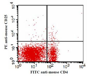 C57BL/6 mouse splenocytes stained with FITC anti-mouse CD4 and PE anti-mouse CD25. This image was taken for the unconjugated form of this product. Other forms have not been tested.