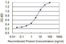 IL36B Antibody - Detection limit for recombinant GST tagged IL1F8 is 0.1 ng/ml as a capture antibody.
