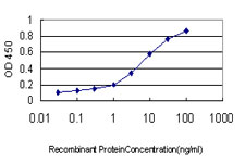 Detection limit for recombinant GST tagged INSRR is approximately 0.03 ng/ml as a capture antibody.
