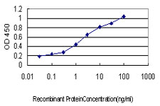 Detection limit for recombinant GST tagged IRF1 is approximately 0.1 ng/ml as a capture antibody.
