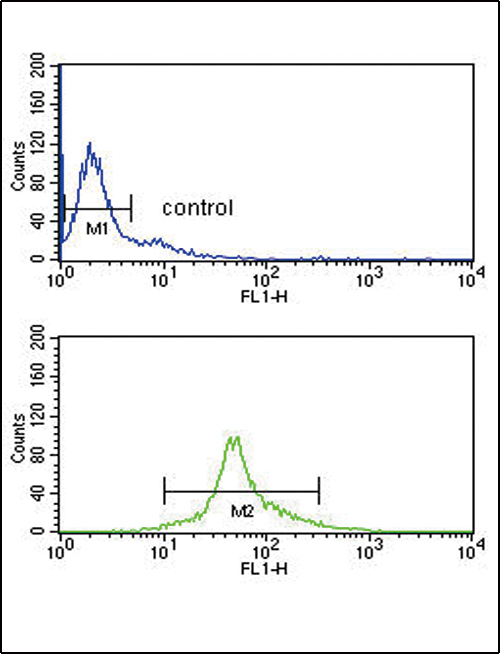 IRF5 Antibody flow cytometry of Ramos cells (bottom histogram) compared to a negative control cell (top histogram). FITC-conjugated goat-anti-rabbit secondary antibodies were used for the analysis.