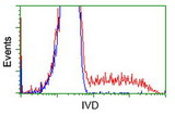 HEK293T cells transfected with either overexpress plasmid (Red) or empty vector control plasmid (Blue) were immunostained by anti-IVD antibody, and then analyzed by flow cytometry.