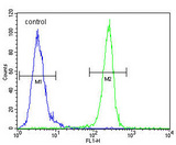 VEGFR2 (FLK1/KDR) Antibody flow cytometry of MDA-MB435 cells (right histogram) compared to a negative control cell (left histogram). FITC-conjugated goat-anti-rabbit secondary antibodies were used for the analysis.