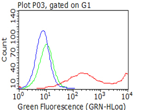 KLRD1 / CD94 Antibody - Flow cytometric analysis of living 293T cells transfected with KLRD1 overexpression plasmid , Red)/empty vector  Blue) using anti-KLRD1 antibody. Cells incubated with a non-specific antibody. (Green) were used as isotype control. (1:100)