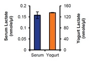 Lactate estimation in pooled human Serum and yogurt. Undiluted serum was used in the assay as described in the kit protocol. A Deproteinizing Sample Preparation Kit was used to remove protein from the yogurt and the supernatant was diluted 1:200 - 1:500.