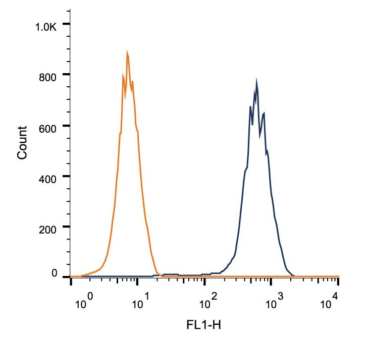 Flow Cytometry: LAMP2 Antibody (H4B4) - Intracellular flow cytometric staining of 1 x 10^6 HEK-293 cells using LAMP2 antibody (dark blue). Isotype control shown in orange. An antibody concentration of 1 ug/1x10^6 cells was used.  This image was taken for the unconjugated form of this product. Other forms have not been tested.