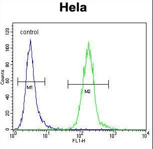 LDLRAD2 Antibody flow cytometry of HeLa cells (right histogram) compared to a negative control cell (left histogram). FITC-conjugated goat-anti-rabbit secondary antibodies were used for the analysis.