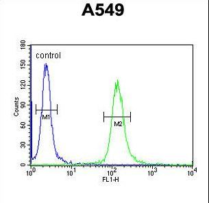 LOH12CR1 Antibody flow cytometry of A549 cells (right histogram) compared to a negative control cell (left histogram). FITC-conjugated goat-anti-rabbit secondary antibodies were used for the analysis.