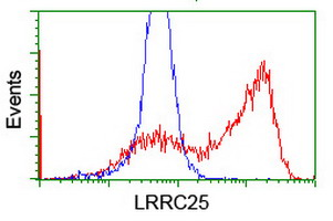 HEK293T cells transfected with either overexpress plasmid (Red) or empty vector control plasmid (Blue) were immunostained by anti-LRRC25 antibody, and then analyzed by flow cytometry.