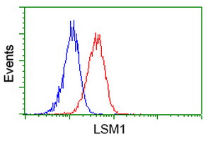 Flow cytometry of Jurkat cells, using anti-LSM1 antibody (Red), compared to a nonspecific negative control antibody (Blue).