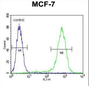 LYSMD4 Antibody flow cytometry of MCF-7 cells (right histogram) compared to a negative control cell (left histogram). FITC-conjugated goat-anti-rabbit secondary antibodies were used for the analysis.
