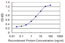 LYST Antibody - Detection limit for recombinant GST tagged LYST is 0.03 ng/ml as a capture antibody.