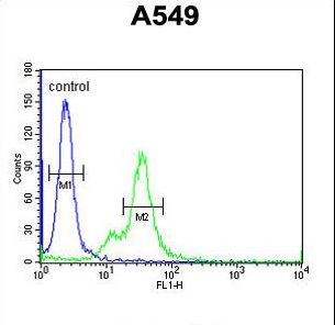 M6PR Antibody flow cytometry of A549 cells (right histogram) compared to a negative control cell (left histogram). FITC-conjugated goat-anti-rabbit secondary antibodies were used for the analysis.