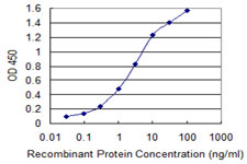 MANF / ARMET Antibody - Detection limit for recombinant GST tagged ARMET is 0.03 ng/ml as a capture antibody.