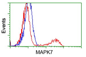 HEK293T cells transfected with either overexpress plasmid (Red) or empty vector control plasmid (Blue) were immunostained by anti-MAPK7 antibody, and then analyzed by flow cytometry.