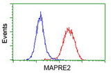 Flow cytometry of HeLa cells, using anti-MAPRE2 antibody (Red), compared to a nonspecific negative control antibody (Blue).
