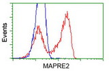 HEK293T cells transfected with either overexpress plasmid (Red) or empty vector control plasmid (Blue) were immunostained by anti-MAPRE2 antibody, and then analyzed by flow cytometry.