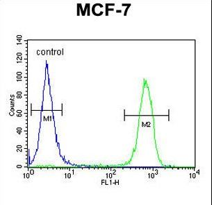 MARCH5 Antibody - MARCH5 Antibody flow cytometry of MCF-7 cells (right histogram) compared to a negative control cell (left histogram). FITC-conjugated goat-anti-rabbit secondary antibodies were used for the analysis.