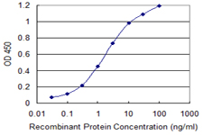 Detection limit for recombinant GST tagged MARS is 0.03 ng/ml as a capture antibody.