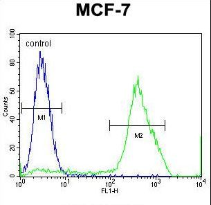 MBD3L3 Antibody flow cytometry of MCF-7 cells (right histogram) compared to a negative control cell (left histogram). FITC-conjugated goat-anti-rabbit secondary antibodies were used for the analysis.
