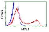 HEK293T cells transfected with either pCMV6-ENTRY MCL1 (Red) or empty vector control plasmid (Blue) were immunostained with anti-MCL1 mouse monoclonal, and then analyzed by flow cytometry.