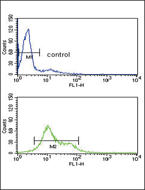MDH1 Antibody flow cytometry of HL-60 cells (bottom histogram) compared to a negative control cell (top histogram). FITC-conjugated goat-anti-rabbit secondary antibodies were used for the analysis.