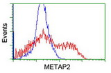 HEK293T cells transfected with either overexpress plasmid (Red) or empty vector control plasmid (Blue) were immunostained by anti-METAP2 antibody, and then analyzed by flow cytometry.