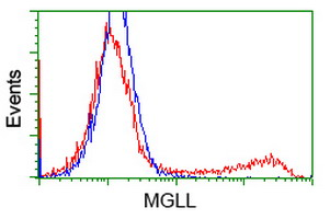 HEK293T cells transfected with either overexpress plasmid (Red) or empty vector control plasmid (Blue) were immunostained by anti-MGLL antibody, and then analyzed by flow cytometry.